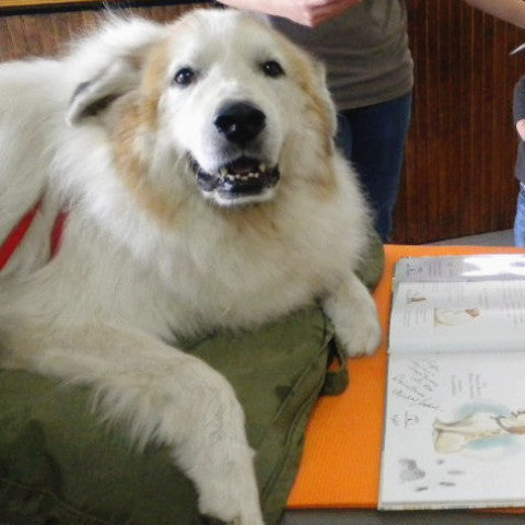 Maxnificent! The Polka Dot Pyrenees Book and Paw Grips - GrifGrips  - 4
