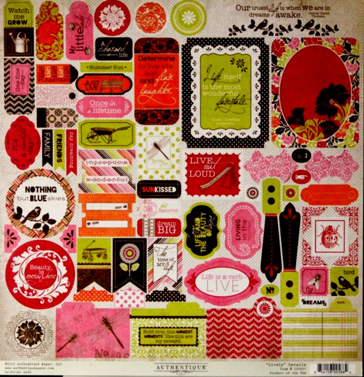 Authentique Lively Details Cardstock Stickers Sheet - SCRAPBOOKFARE