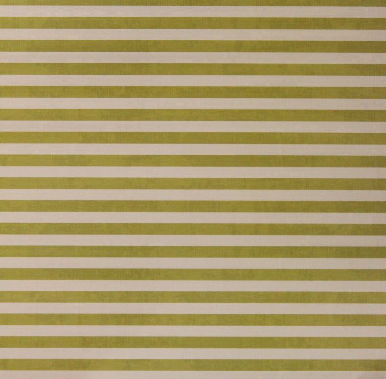 "Craft Smith 12"" X 12"" Sea Glass Moss Green Stripes Textured Cardstock Scrapbook Paper"