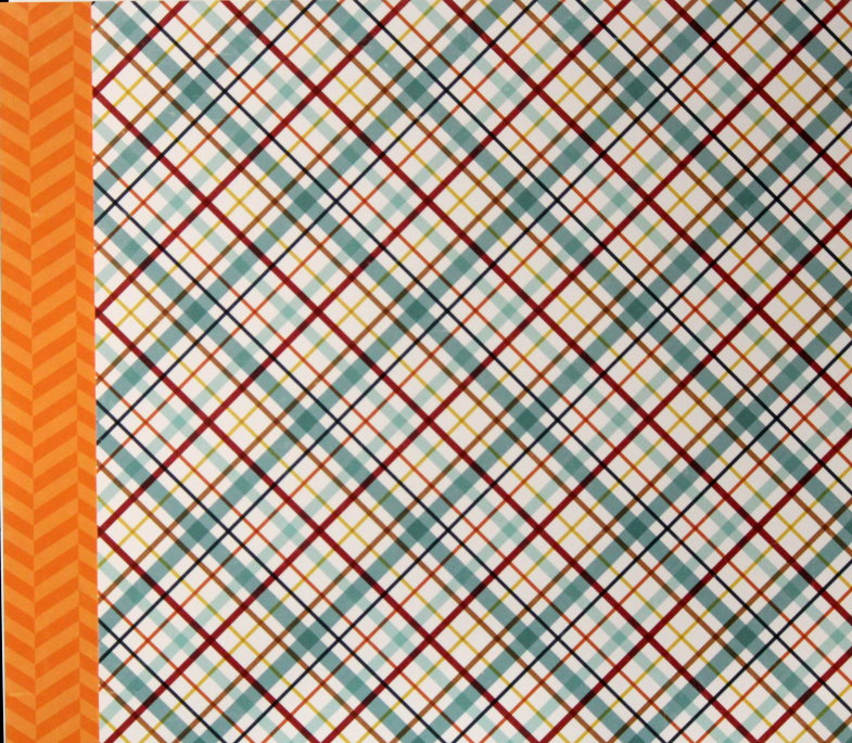 Echo Park 12 x 12 Bark Puppy Plaid Double-Sided Scrapbook Paper