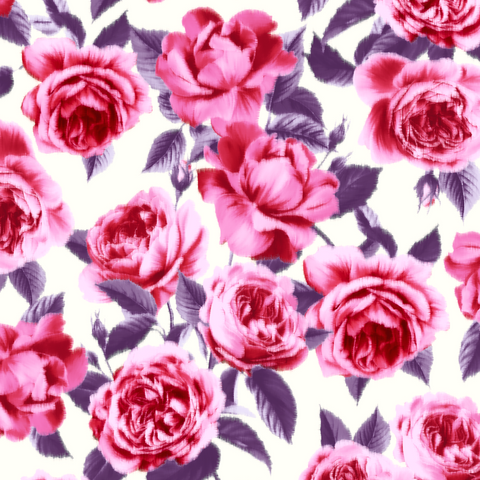 FS436_1 Blossom Rose | Fabric Styles