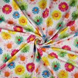 FS207 Multi Colour Gerbra Daisy