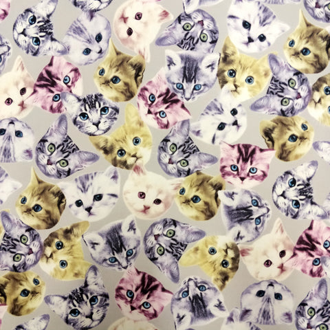FS205_2 Grey Cats | Fabric Styles