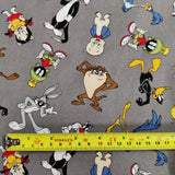 FS828_1 Looney Tunes Cotton
