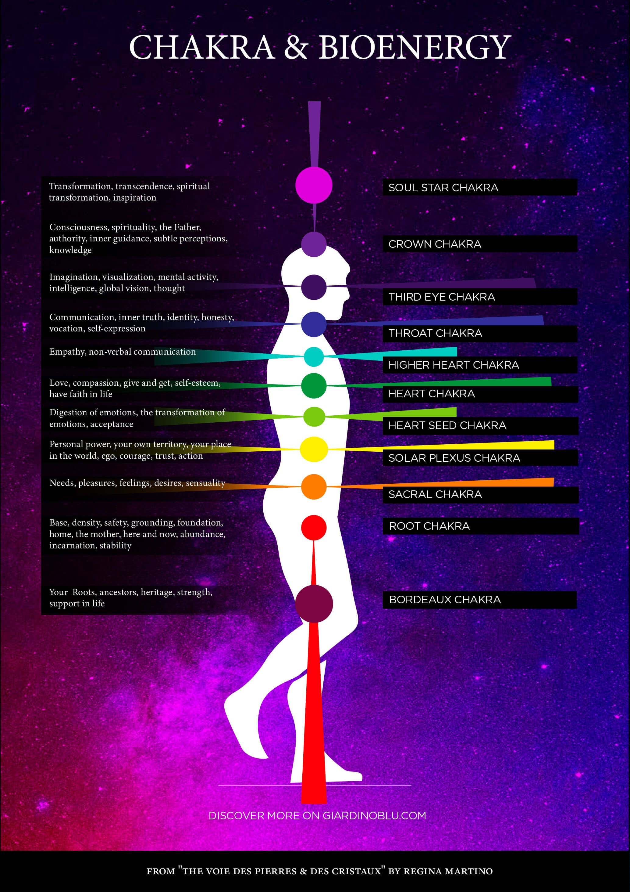 Chakras and Bioenergy diagram