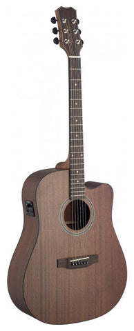James Neligan DEV-DCFI Electro Acoustic Guitar - Worcester Guitar Centre Guitar Shop - 1