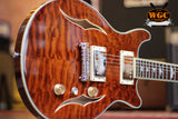Rally Semi-Hollow Bird Inlay Paul Style Electric Guitar (Pre-Owned)
