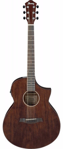 Ibanez AEW40CD Electro Acoustic Guitar - Worcester Guitar Centre Guitar Shop