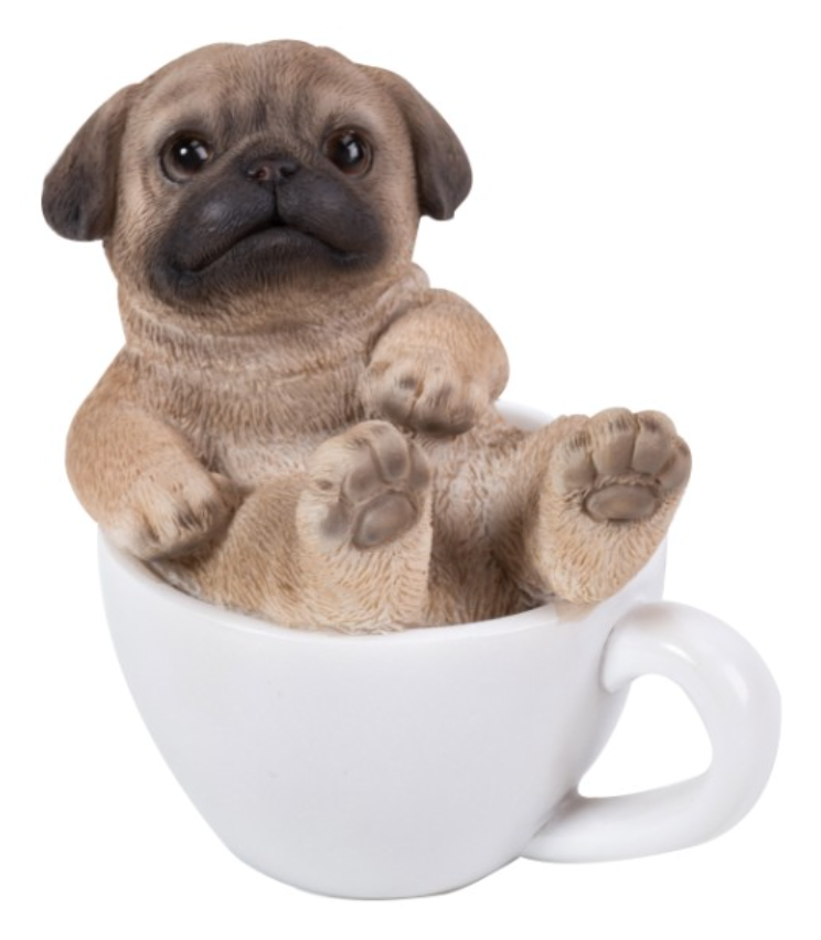 Pug Mini Tea Cup Pup