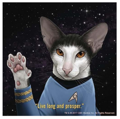 Star Trek Cats