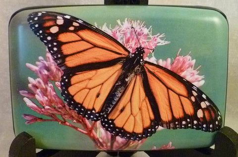Wallet - Butterflies Monarch