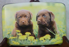 Wallet - Chocolate Lab Puppies