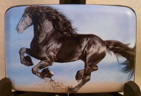 Wallet - Horse Black Beauty