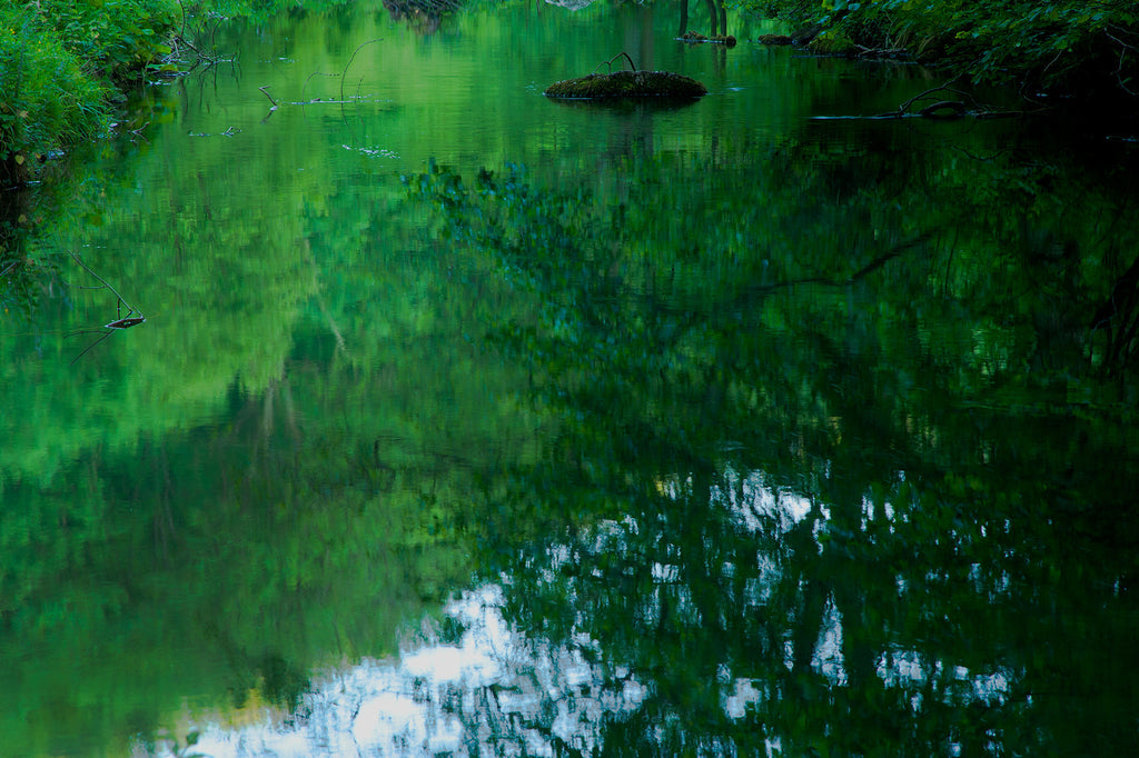 Green Reflections, River Dove, Derbyshire