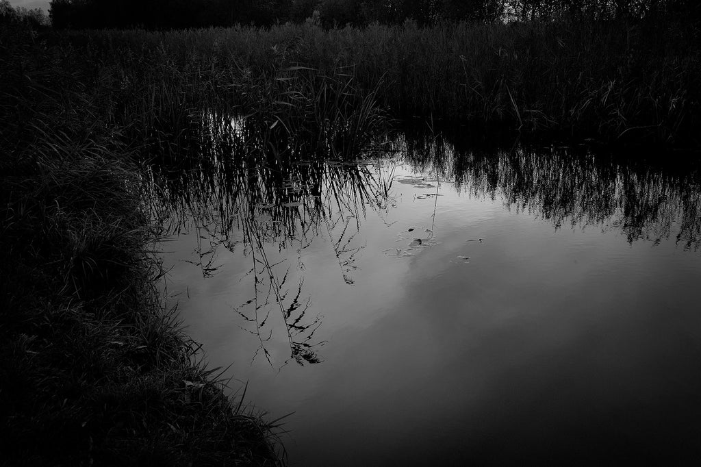 Reflections in Pond, Fenland