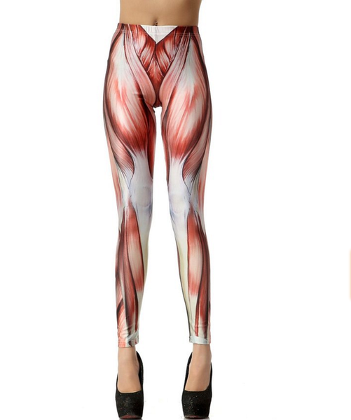 Anatomy Leggings | Muscles