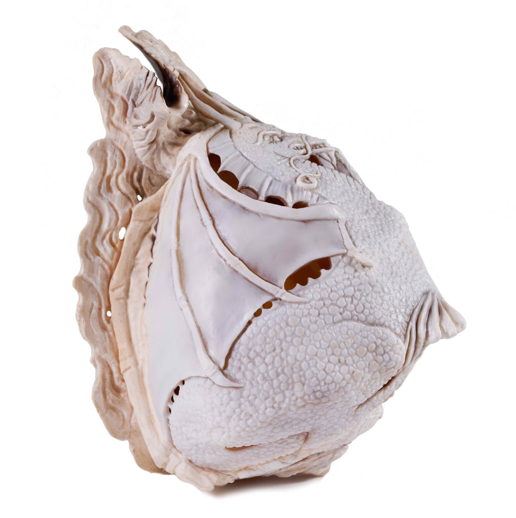 """DRAGON"" ONE OF A KIND HAND CARVED SHELL"
