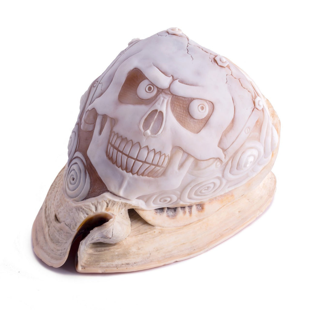"""Teschio"" One of a kind hand carved shell"