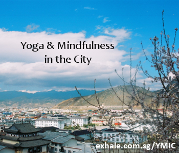 Yoga & Mindfulness in the City