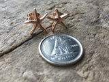 Rose gold starfish earrings rose gold earrings find your star - Petit Luxe Shop
