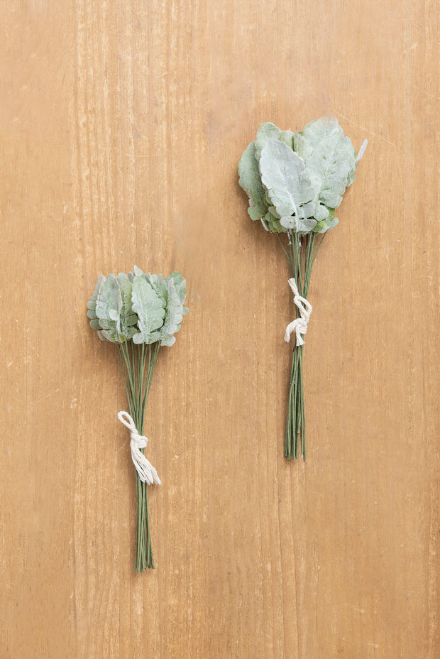 Dusty Miller 2 Bundles Pack