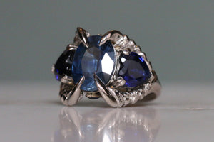 Danny's Sapphire Ring