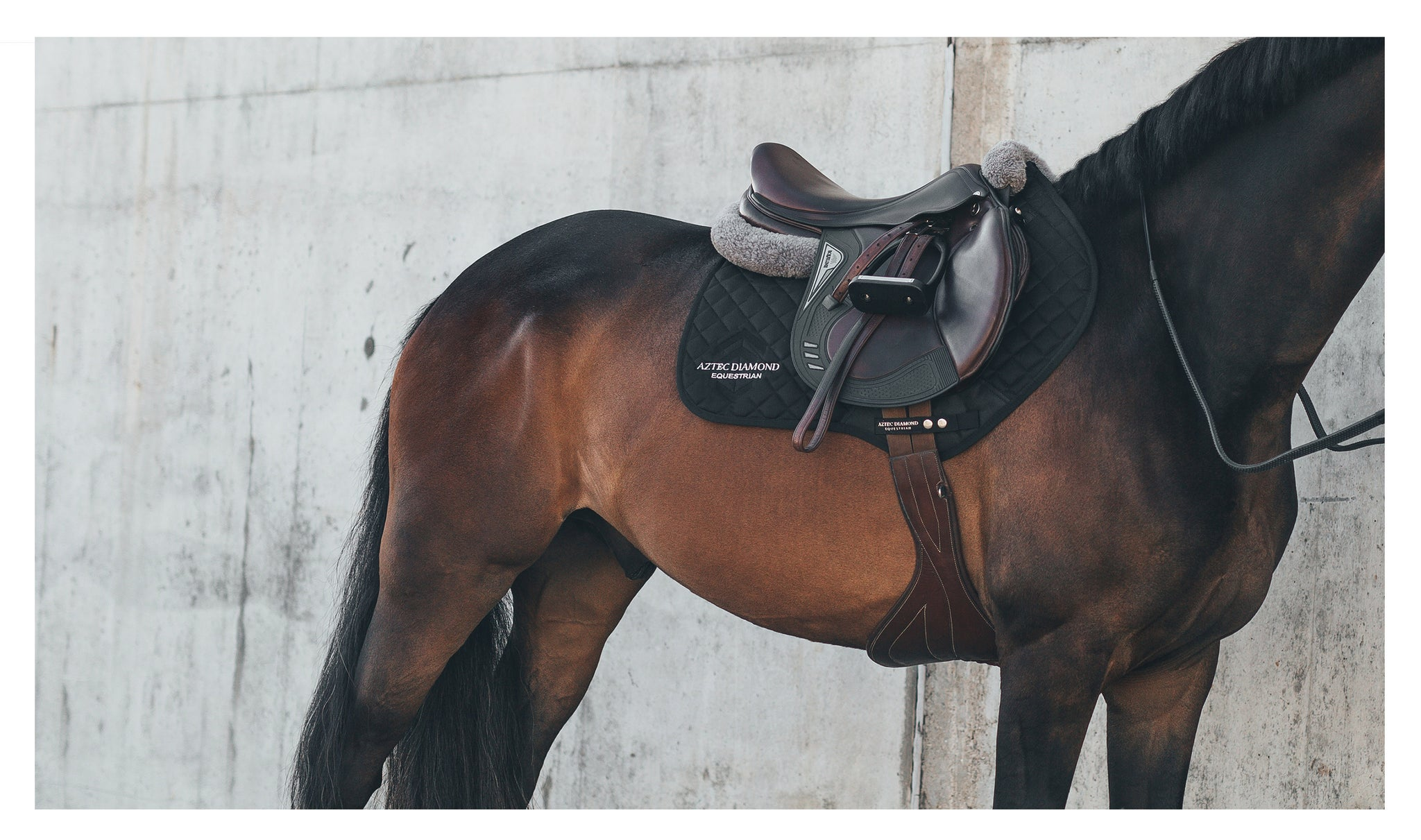 Aztec Diamond Launch Their First Horse Wear Range Aztec