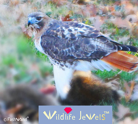 Wildlife Jewels® Wildlife Inspirations The Red-Tailed Hawk