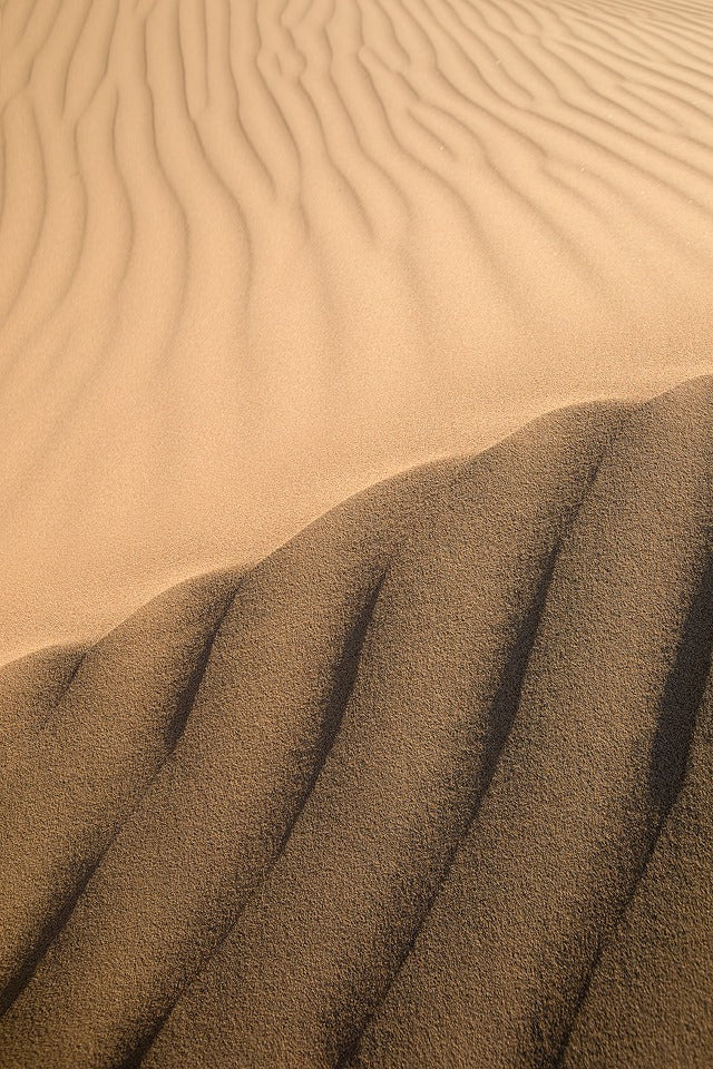 Sands of Mongolia