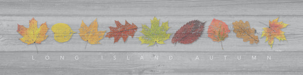THE FOUR SEASONS - Long Island Autumn (Fall) - Giclée on Canvas