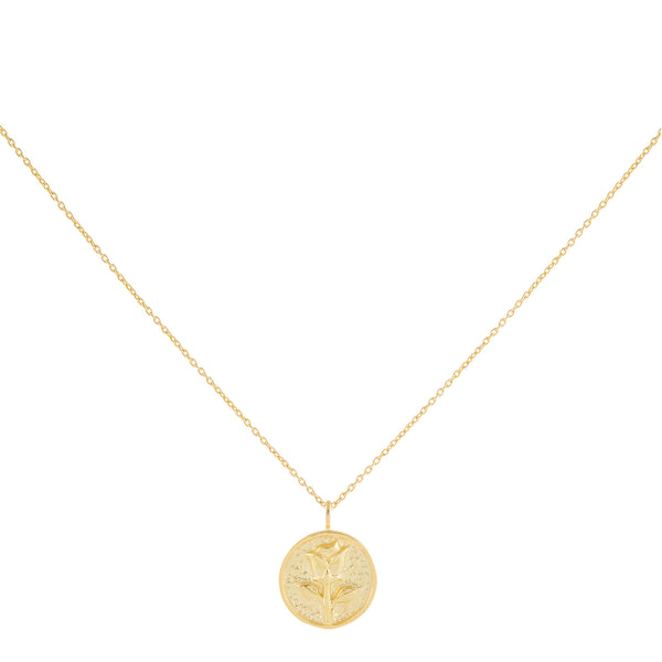 Gold Rose Coin Necklace - Adina's Jewels