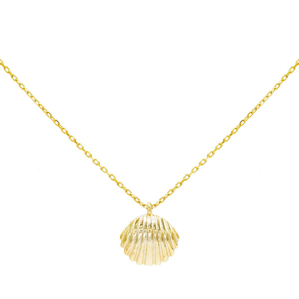 Gold Shell Pendant Necklace - Adina's Jewels