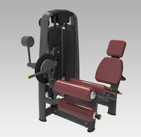 Dual Leg Extension/ Leg Curl Seated Full Commercial