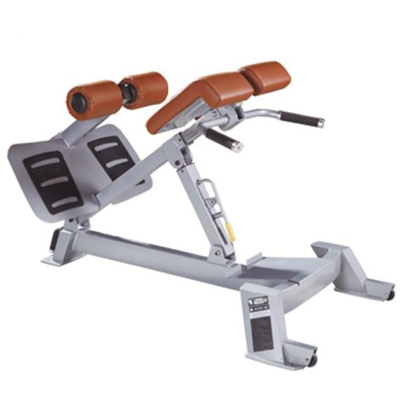 IC-P5026 Commercial Adjustable Back Extension Heavy Duty Gym Fitness