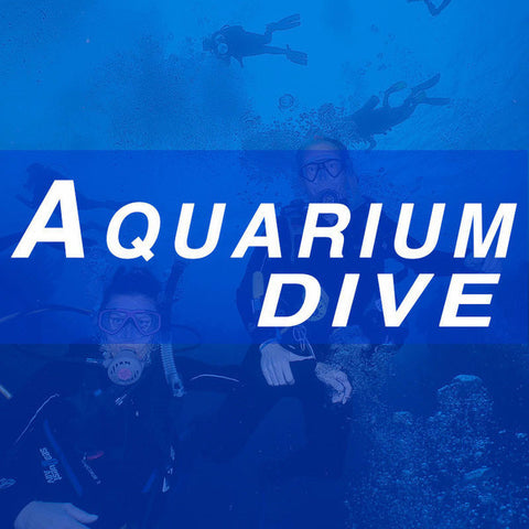 Aquarium Dive - August 28, 2016 - 3:45 p.m