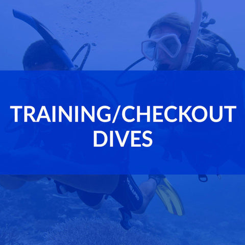 Training Dives August 6th-7th Hyde's