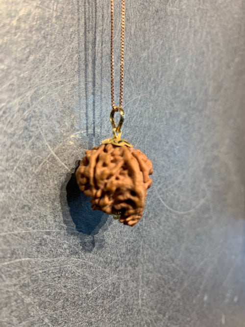Ganesh Rudraksha with 18ct Gold | Remover of Obstacles