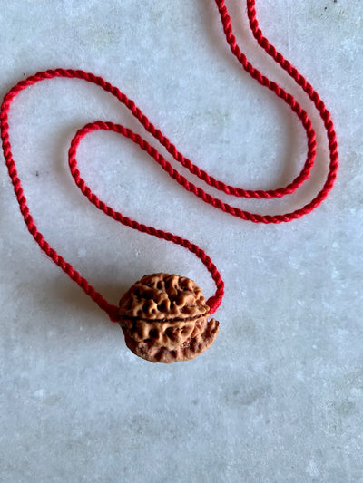 Ganesh Rudraksha | Removing Obstacles