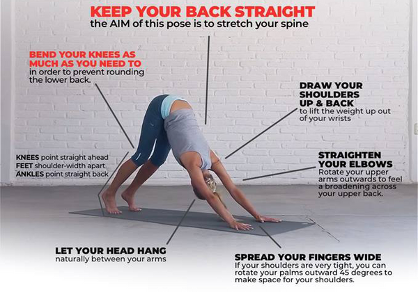 Yoga For Newbies New Beginner Yoga Sessions Available Now The Sufferfest