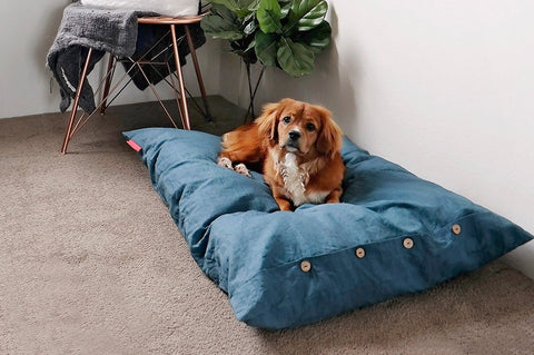 Image of Blue Organic Mano Bed