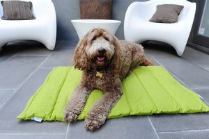 Travel Dog Mats