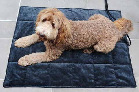 Designer Dog Travel Blankets