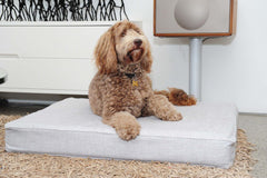 Introducing the Classico 1 dog bed - ultimate comfort has never looked this good!