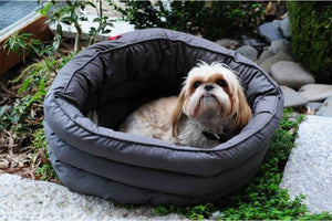 The Diva bed for dogs redefines night time luxury