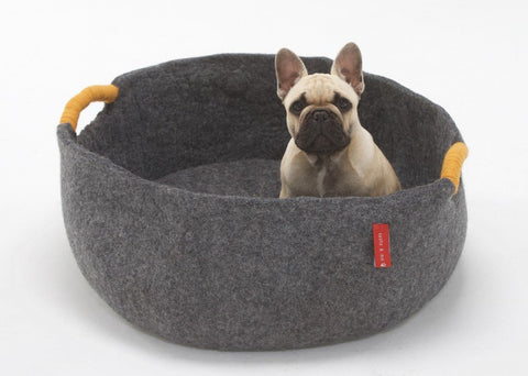 Image of Dog With Dog Basket