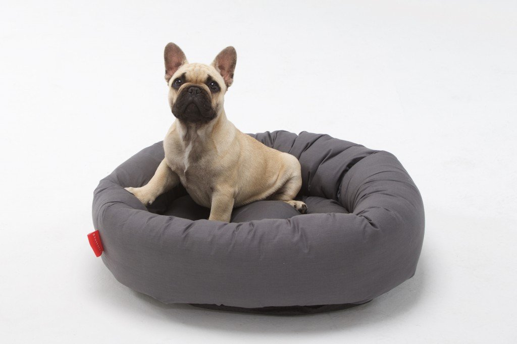 Designer Uovo Dog Beds