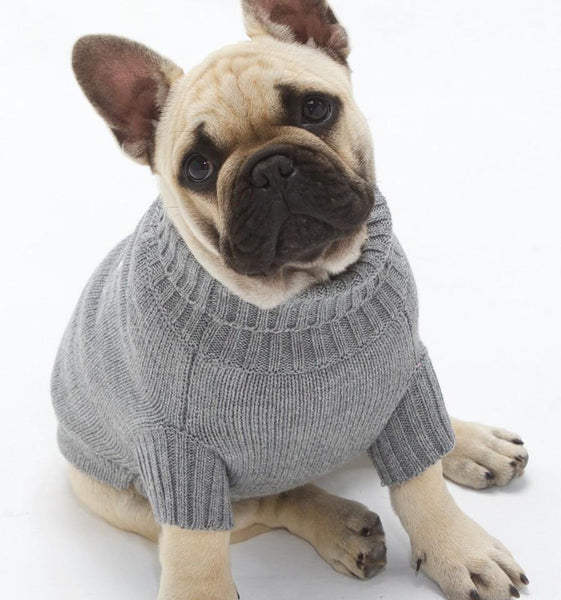 Dog Neck Jumper