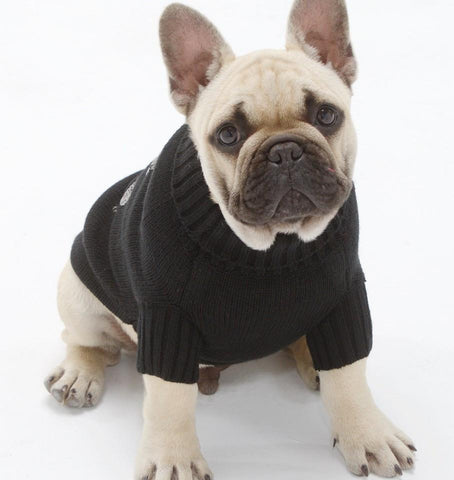 Skull jumper for dogs
