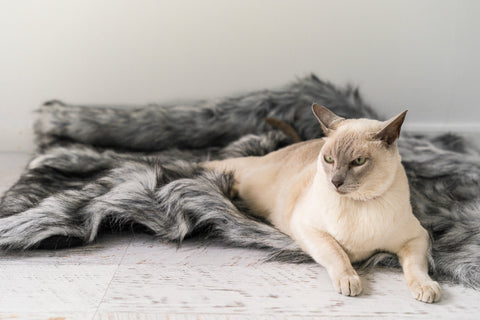 Reposo cat blanket - durable and comfortable