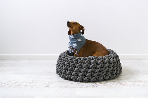 Sasha's versatile dog scarf (and throw, blanket, towel or mat all rolled into one!)